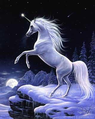 La Camara Oscura y el Unicornio